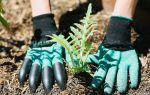 Перчатки со специальными наконечниками для посадок Сarden Сenie Gloves