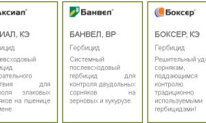 Агрохимикаты Syngenta® — назначение и рекомендации по применению