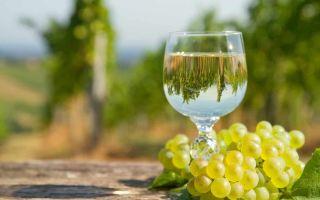 Виноград Бианка: традиционный винный сорт
