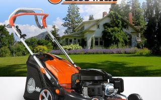 Oleo-Mac: газонокосилки и бензокосы
