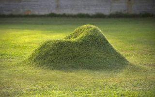«Травяное» кресло Terra