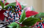 Девичий виноград: внешний вид, плоды. Уход и видео обзоры