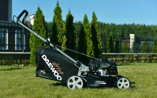 Бренд Daewoo: газонокосилки и мотокосы